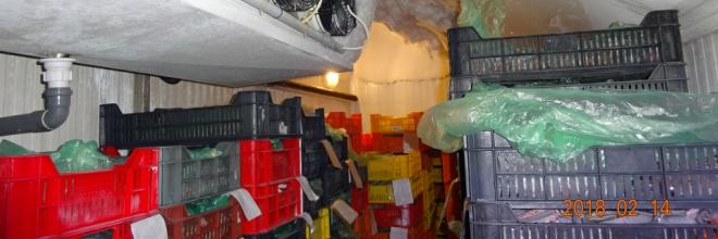 Több mint 5 tonna élelmiszert vont ki a Nébih a forgalomból egy Pest megyei házhoz szállító cégnél
