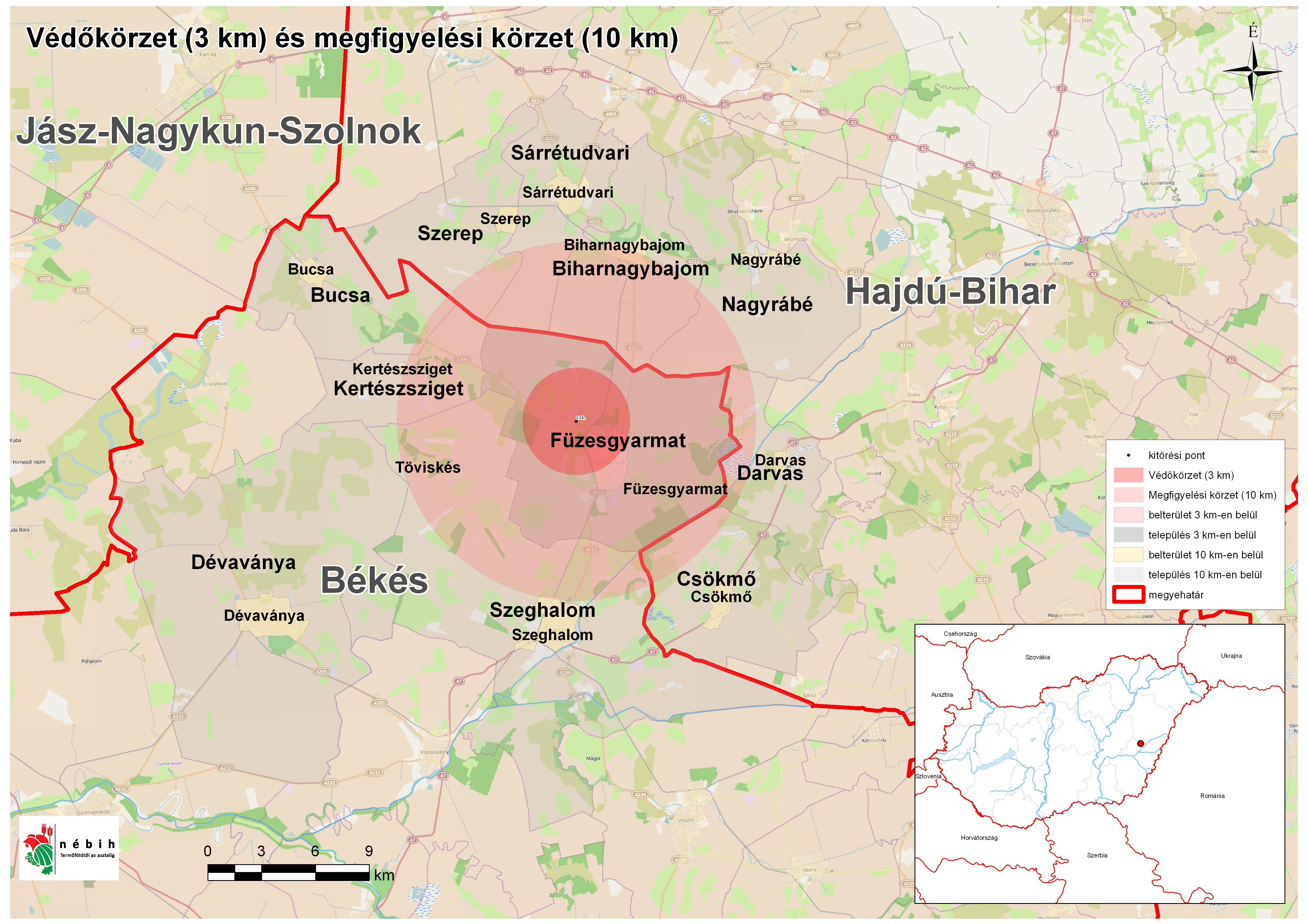 füzesgyarmat térkép Madárinfluenza egy Békés megyei kacsaállományban   Madárinfluenza  füzesgyarmat térkép